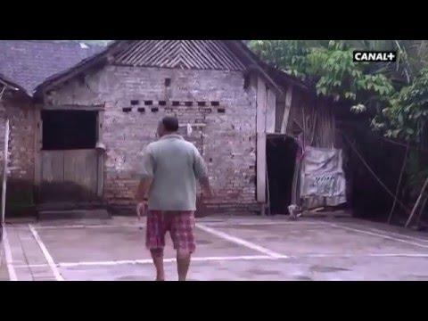 Badminton - Passion of Sport Taufik Hidayat Arena (France Channel)