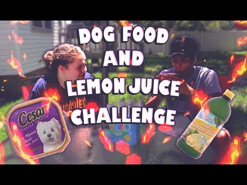 DOG FOOD AND LEMON JUICE CHALLENGE(GONE WRONG!!!) *VOMIT WARNING* | REAL LIFE YOUTUBE CHALLENGES 😷