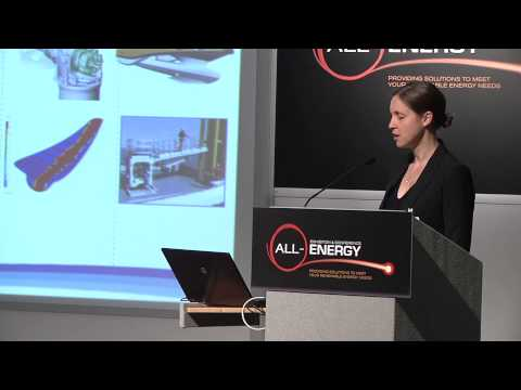 Breanne Gellatly, Associate Director-Offshore Wind, The Carbon Trust at All-Energy 2014