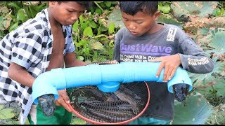 Easy Trap To Catch A lot of Fish By Electric Fan Guard And PVC Pipe 100% Work