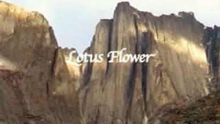 Lotus Flower Multipitch Climbing In Canada [français