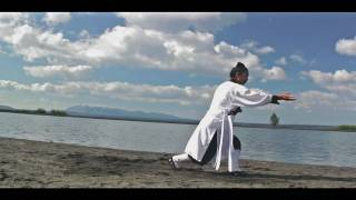 Wudang Kung Fu   武当太乙五行拳  Wudang Taiyi Five Element Form