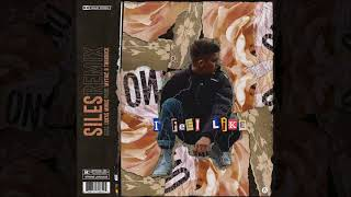 Siles - I Feel Like Ft. Lukas Mihas