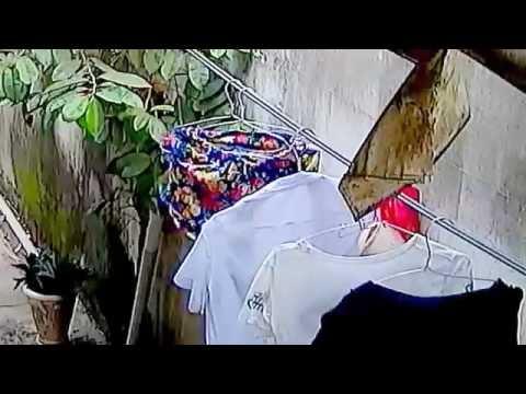 Trộm đồ lót phụ nữ
