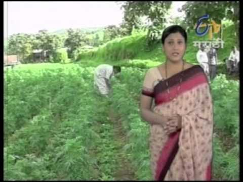 CONTINGEANCY CROP MANAGEMENT IN KHARIF SEASON