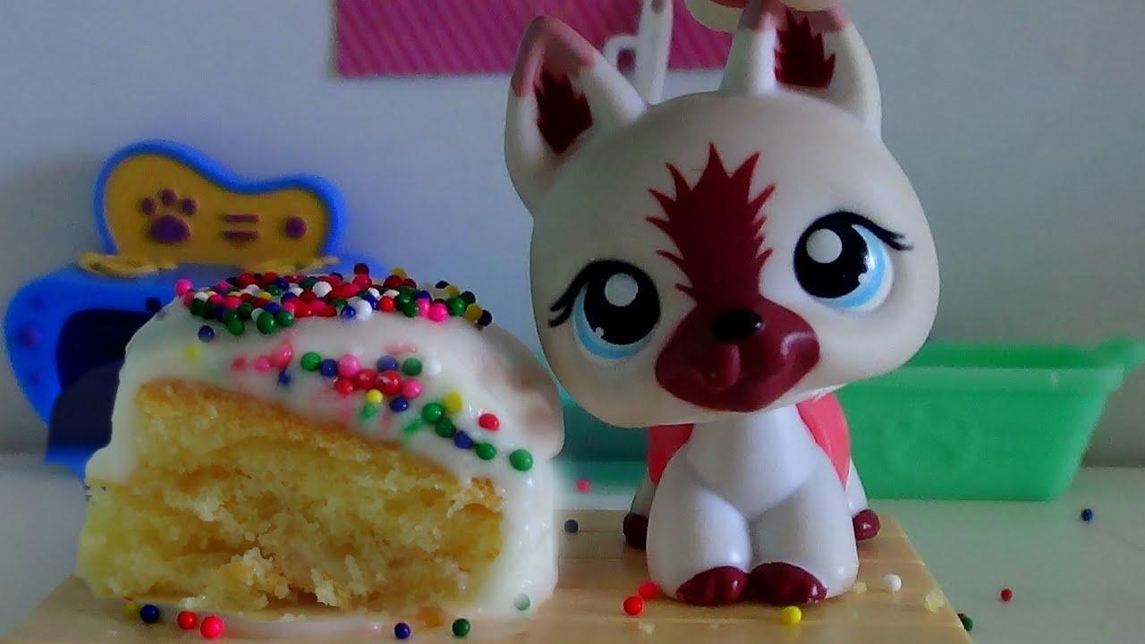 Lps Cooking With Lauren Birthday Cake