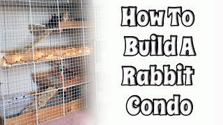 BudgetBunny: Building Your Own Rabbit Condo