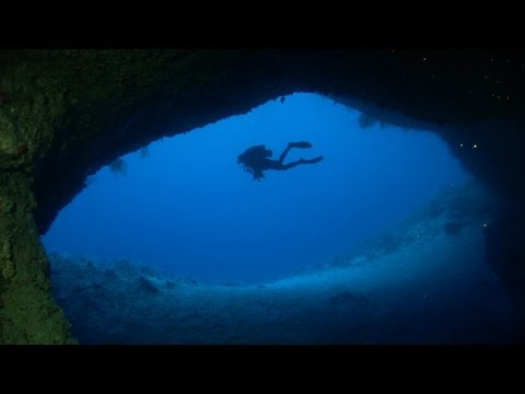 Dakuwaqa's Dream - Scuba Diving in Fiji