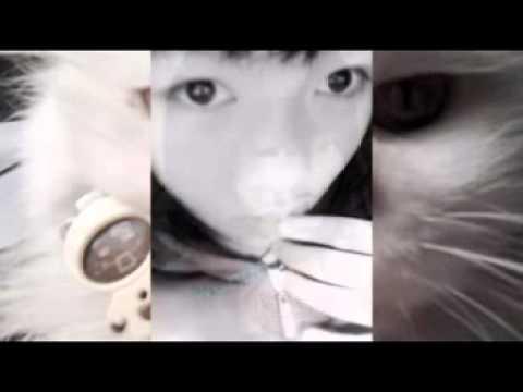 Hình ảnh trong video Xem ca nhạc hải ngoại