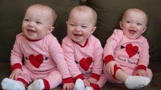 Bebés muertos de la risa