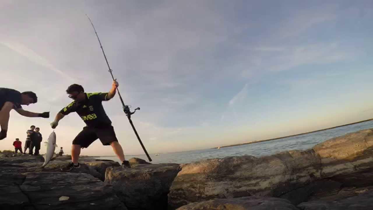 Surf fishing longisland ny fishing balik avi lufer for Surf fishing nj license