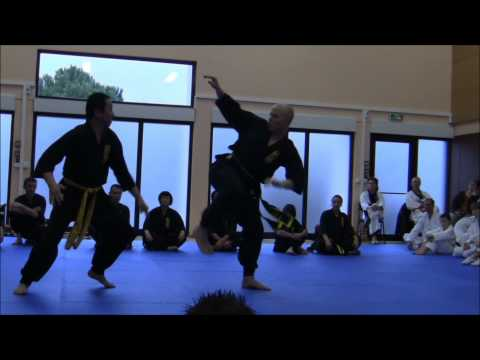 [Nam-Ho-Quyen] Techniques de combats par Vo-Su Dang-Van-Sung - Berre le 29.01.2011