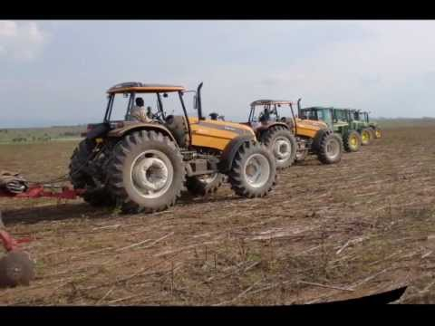 SEDIAC,Agricultura em Angola,plantio de milho.
