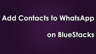How To Add Contacts To WhatsApp On BlueStacks