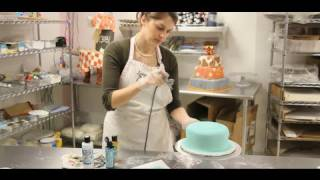 How To Airbrush A Cake Cake Decorations