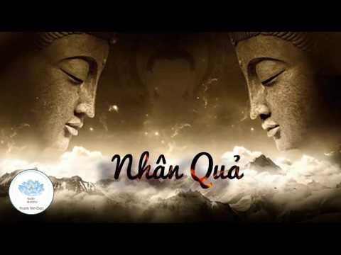 Những Câu Chuyện Nhân Quả Phật Còn Tại Thế - Phần 4 - Kể Truyện Đêm Khuya - Những Lời Phật Dạy