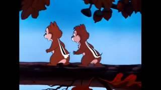 Káčer Donald a Chip a Dale I.