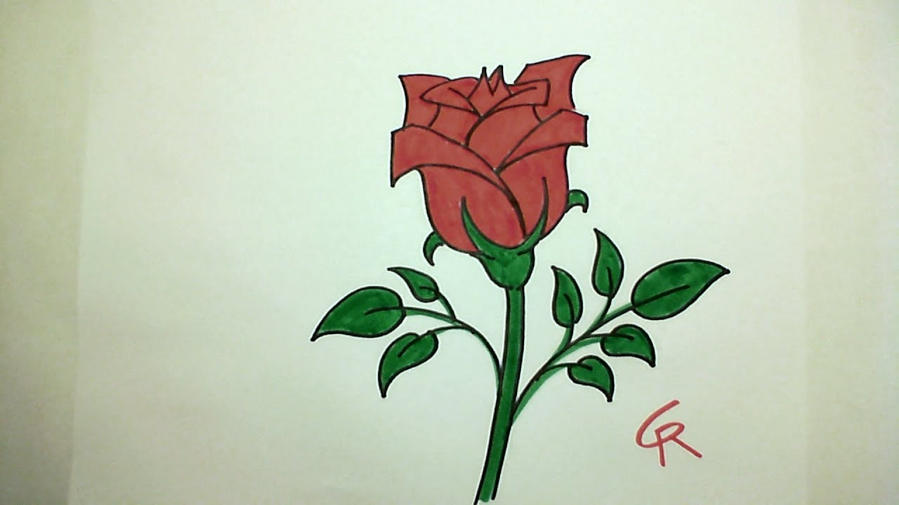 How to draw pretty rose for Pretty rose drawings