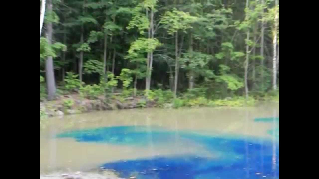 Pond dye blue bayou before after youtube for Blue pond dye