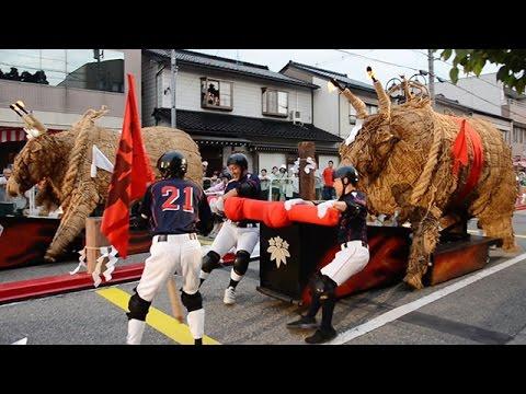 巨大火牛引き疾走 小矢部でまつり 富山