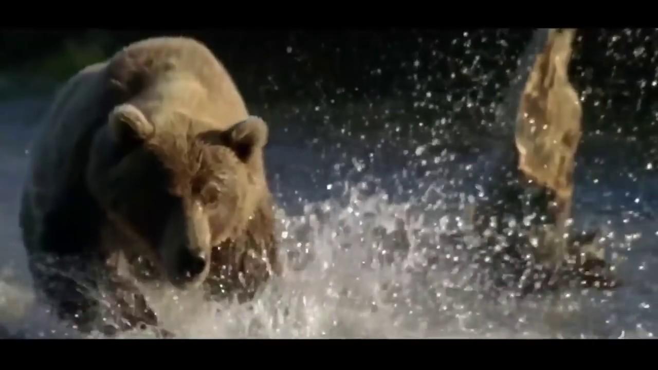 Николай Расторгуев - «Пролетаю над Россией»