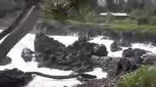 The Road To Hana Maui Hawaii 0106