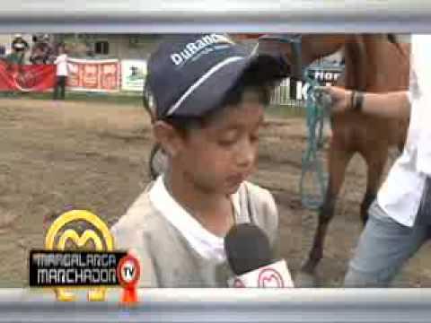 MMTV no. 218 - exibido 08/12/2013