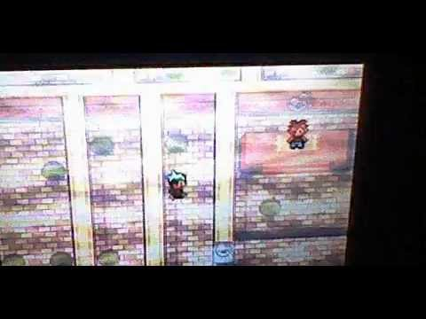 Guia pokemon esmeralda el gimnasio de pueblo for Gimnasio 7 pokemon esmeralda