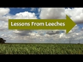 Lessons from Leeches Benjamin Lee