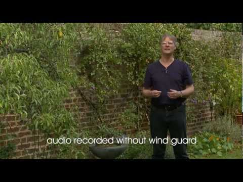 Reducing wind noise on video