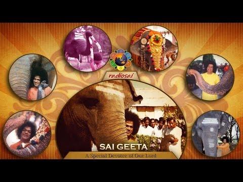 A Special Programme in Memory of Sai Gita