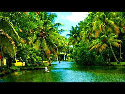 Alleppey Backwaters Kerala,  India - 2014