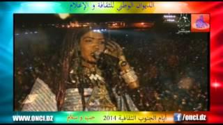 أيـــــام الـجـنـــوب 2014 - عرض