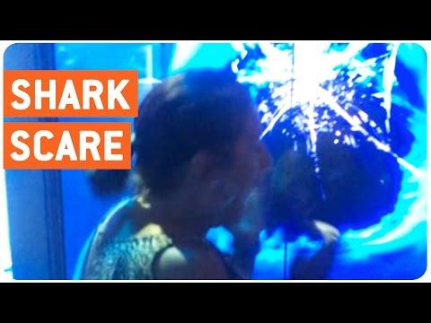 Shark Scares Grandma Prank