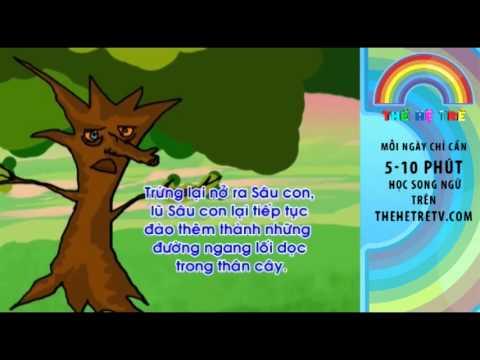 Câu Chuyện Chim Gõ Kiến và Cây Sồi - Vietnamese Children's Stories - TheHeTreTV.com