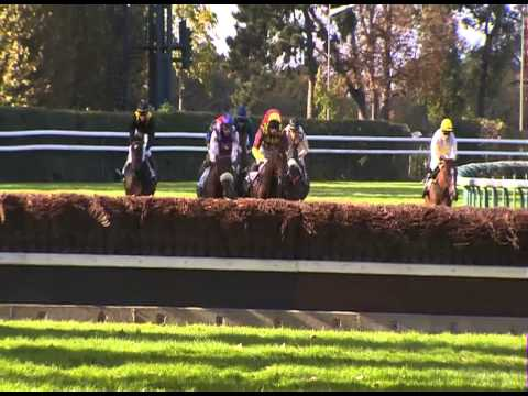 Vidéo de la course PMU PRIX CAMBACERES - GRANDE COURSE DE HAIES DES 3 ANS