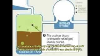 Biogas o gas Metano como se obtiene