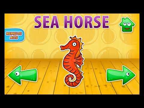 Bé học Tiếng Anh các con vật dưới nước | Phát âm chuẩn | Hình ngộ nghĩnh dễ nhớ p3