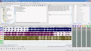Sony Sound Forge Pro 10 Basic Tutorial