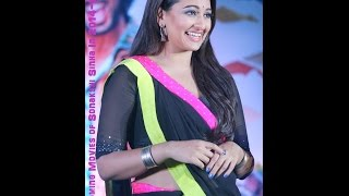 Upcoming Movies Of Sonakshi Sinha In 2014-2015