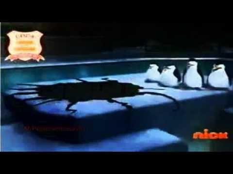 Os Pinguins de Madagascar - Jiggles (Dublado)