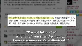 Social Media Erupts after Bo Xilai Firing