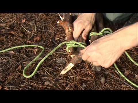 Jak zrobić podwieszaną półkę w lesie