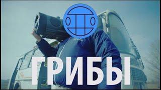 Скачать клип Грибы - Тает Лёд