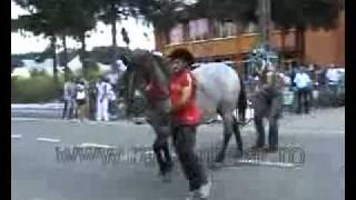 Faze Comice.lovitura Calului =))