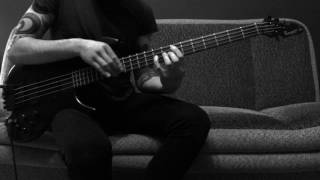 Bassist Fabian Urbaniak - The Story About Bird & Snake