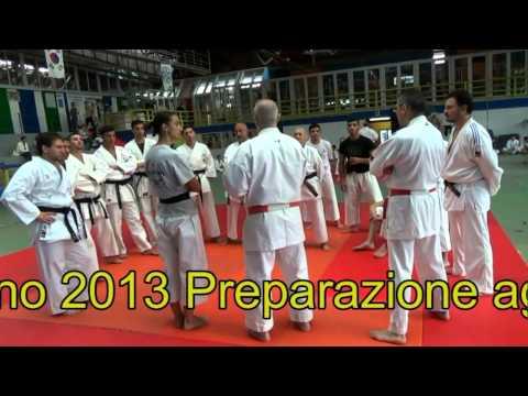 Napoli 29 /30/ 6/  2013 Palazzo dello sport di Ponticelli Esami di Karate di  I, II e III Dan
