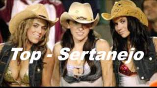TOP SERTANEJO, SÓ AS TOP'S 2011 view on youtube.com tube online.