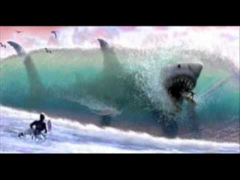 hqdefault jpgWorlds Biggest Shark Megalodon Caught On Camera