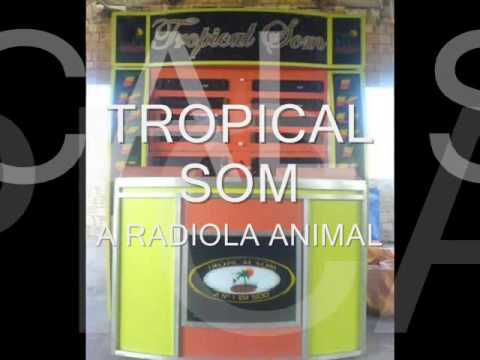 RADIOLA TROPICAL SOM REGGAE DO MARANHAO